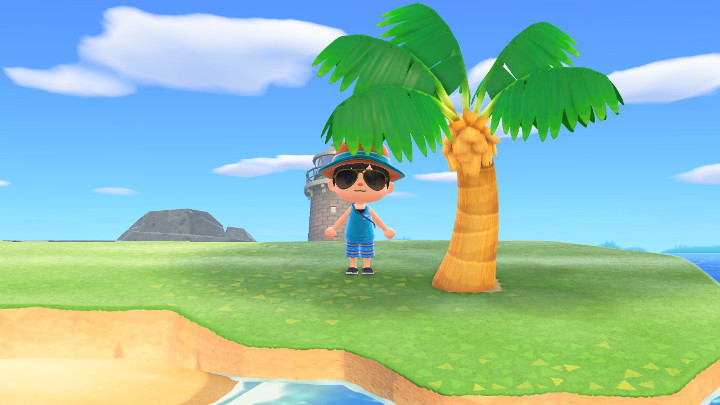 How to Plant Palm Trees on Grass in Animal Crossing: New ...