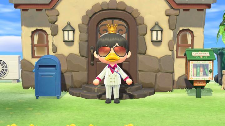 Animal Crossing: New Horizons Fancy Home