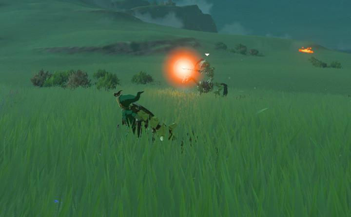 Breath of the Wild Stalhorse