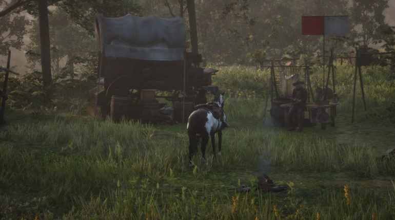 Red Dead Redemption 2 Camp