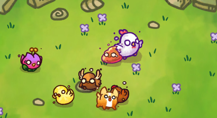 hyberbeard mobile game chichens