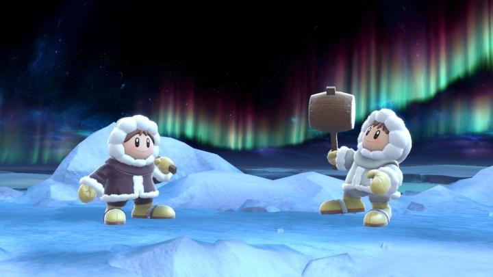 smash bros ice climbers seperate